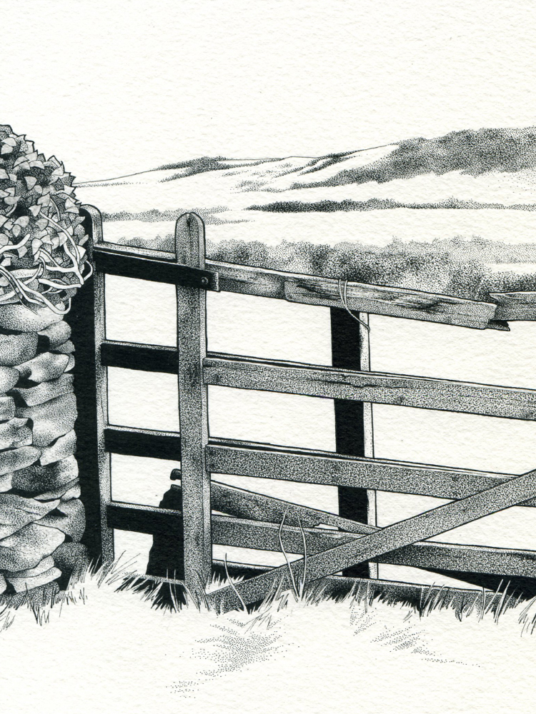 Pen & ink drawing of a gate in the Isle of Man